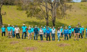 Grupo Popular siembra 1,500 arboles en el Plan Sierra